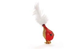 Weihnachtsvogel Stockfotografie