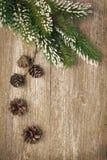 Weihnachtsweinlesehintergrund (mit Tannenzweigen und Kegeln) Stockfoto