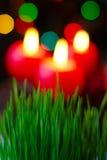 Weihnachtsweizen und -kerzen Lizenzfreies Stockfoto