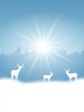 Weihnachtswinter background Lizenzfreies Stockfoto
