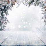 Weihnachtswinter background Lizenzfreie Stockfotografie