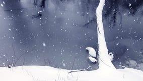 Weihnachtswinter-Hintergrund-Landschaft stock video footage
