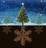 Weihnachtswurzeln Lizenzfreie Stockfotografie