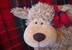 """Weihnachtszeit †""""lustiges Spielzeug-Affegesicht mit warmem rotem Plaidhintergrund Lizenzfreie Stockfotos"""