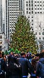 Weihnachtszeit in Rockefeller-Mitte Lizenzfreies Stockbild