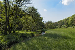 The Weil river in the weillal near Schmitten, Taunus, Germany Royalty Free Stock Photo