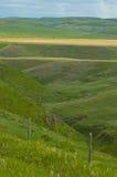 Weiland 1 van de prairie stock afbeelding