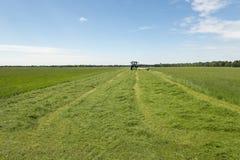 Weiland het maaien met blauwe tractor Royalty-vrije Stock Foto's