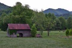 Weilandmening met schuur, vrachtwagen, koeien, en bergen stock fotografie
