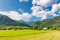 Weilandweide in Slovenië Groen gras, weilandhuis en Julian alpen op achtergrond Blauwe hemel in de zomer De herfst Slovenië stock foto's