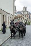 WEIMAR, GERMANY/EUROPE - 14 DE SEPTIEMBRE: Caballos y carro en W imagen de archivo libre de regalías