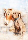 Weimaraner dog sitting next to his resting friend Stock Photo