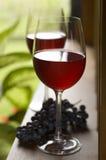 Wein lizenzfreies stockfoto