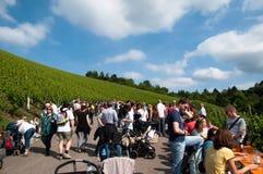 Wein-Ausflug im Obertà ¼ rkheim nahe Stuttgart, Deutschland Stockbild