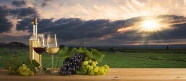 Wein bei Sonnenuntergang, Landschaft Stockfotos