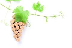 Wein bekorkt Traubenform und -rebe stockbild