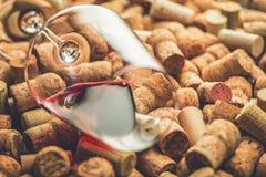 Wein bekorkt Traubenform und -rebe auf Steintabelle Draufsicht mit Kopienraum für Ihren Text lizenzfreie stockfotografie