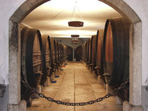 Wein Celler 2 Stockfoto