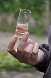 Wein degustation Lizenzfreie Stockfotografie