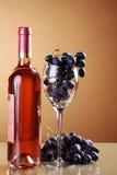 Wein in der Flasche und in den Trauben Lizenzfreie Stockfotografie