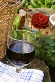 Wein für ein Picknick Stockfotos