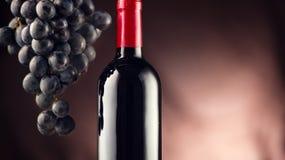 Wein Flasche Rotwein mit reifen Trauben Lizenzfreie Stockfotos