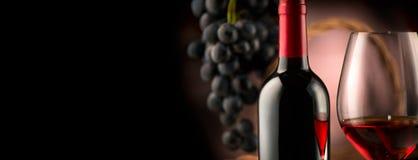 Wein Flasche und Glas Rotwein mit reifen Trauben lizenzfreies stockbild