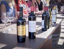 Wein-Flaschen für das Schmecken, Baja, Mexiko stockbild