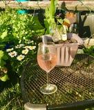 Wein-Garten Lizenzfreies Stockfoto