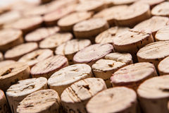 Wein-Korken Stockfotografie