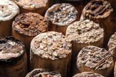 Wein-Kristalle auf alten Korken Lizenzfreies Stockbild