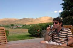 Wein-Land 5 Lizenzfreies Stockbild