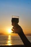 Wein mit Sonnenuntergang Stockfotografie