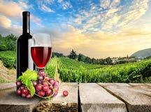 Wein mit Traube und Weinberg Stockfotografie