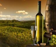 Wein mit Weinberg auf dem Hintergrund Lizenzfreie Stockbilder