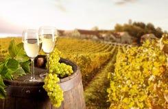 Wein mit Weinberg auf Hintergrund Stockfotografie