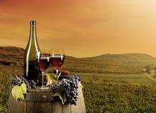 Wein mit Weinberg auf Hintergrund Lizenzfreie Stockfotos