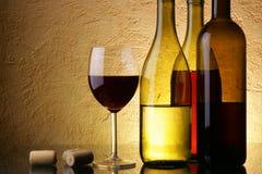 Wein-Prüfung Lizenzfreie Stockfotos