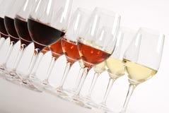 Wein-Probieren Lizenzfreies Stockbild