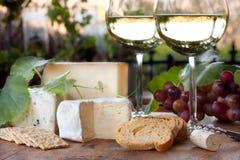 Wein-Probieren Stockfoto