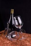 Wein u. Gläser Lizenzfreie Stockfotos