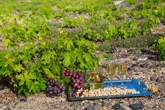 Wein und Acajounüsse auf einem Behälter Lizenzfreies Stockbild