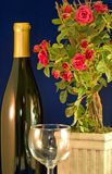 Wein und Rosen Lizenzfreies Stockbild