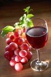 Wein und Traube Lizenzfreie Stockfotos
