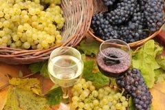 Wein und Trauben Stockfoto