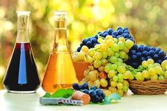 Wein und Trauben in den Flaschen Lizenzfreies Stockbild