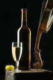 Wein und Violine Lizenzfreies Stockbild