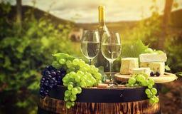 Wein und Weinberg im Sonnenuntergang Stockfotografie