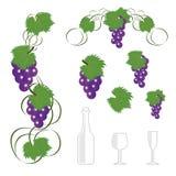 Weinauslegung elements1 Lizenzfreies Stockbild