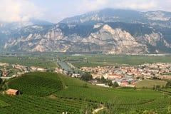 Weinbau entlang dem Adige, italienische Dolomit Stockfotos